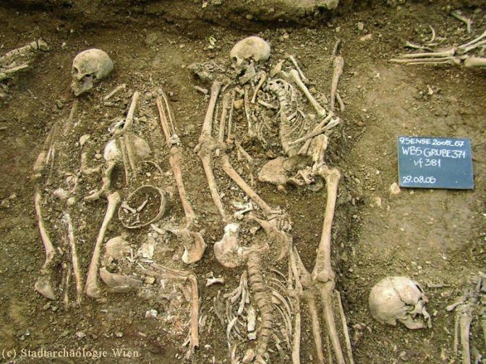 Bäckenhäusel Friedhof: Massengrab mit möglichst Platz sparend in die Grube gelegten Toten.