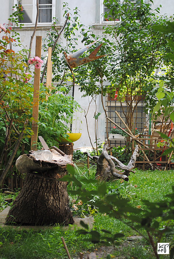 1040_urban-gardening_02