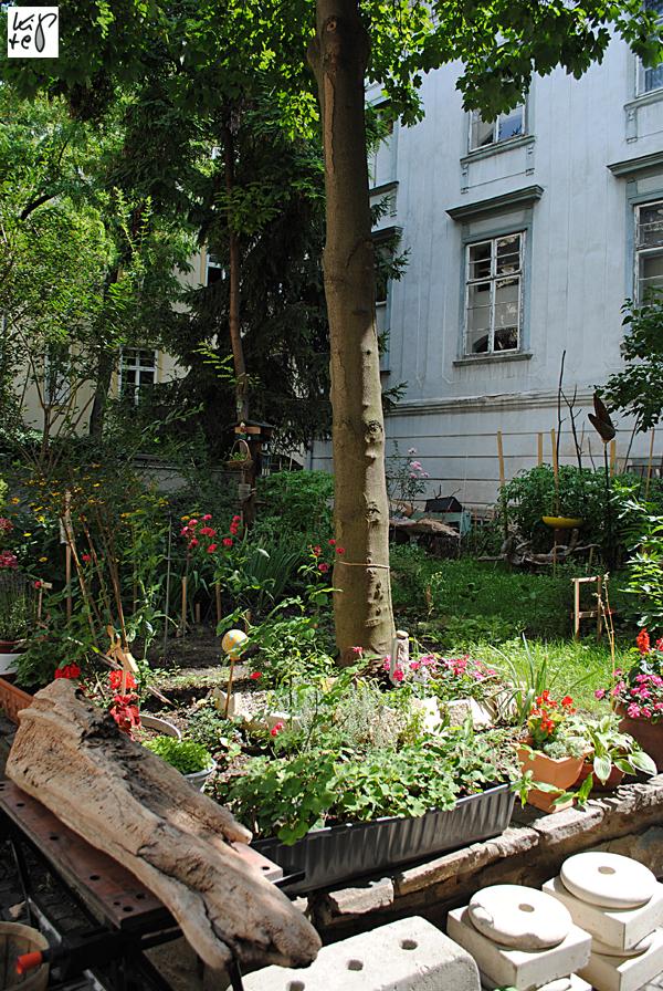 1040_urban-gardening_05