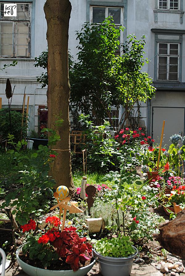 1040_urban-gardening_09