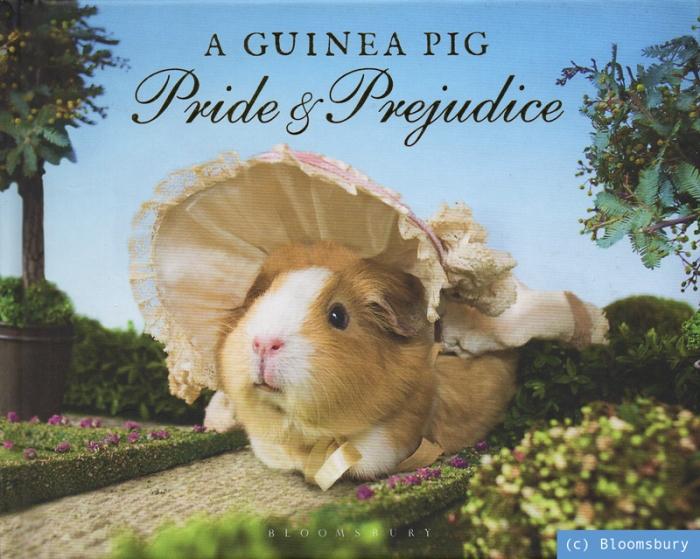 pride_guineapig_klein